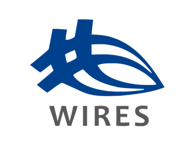 Wires logo
